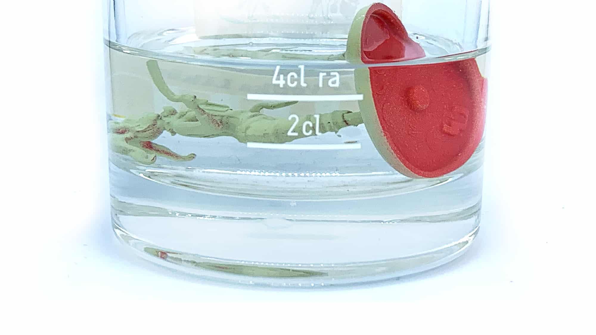 Eine Miniatur liegt in einem Glas Isopropanol.